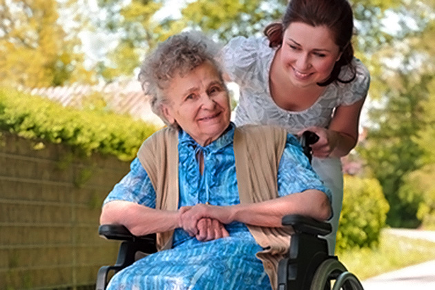 The Family Caregiver Support Program